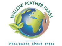 WillowFeather